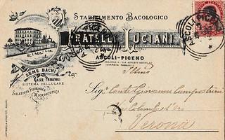7 Aprile 1897: Stabilimento Bacologico