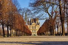 470 Paris en Février 2018 - dans le Jardin des Tuileries, avec Le Louvre au fond (paspog) Tags: paris france jardindestuileries jardin parc park louvre terrasse février february februar 2018
