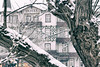 Schneetreiben im Harz (michael_hamburg69) Tags: badharzburg harz germany deutschland hotelvictoria baum tree winter snow march märz landkreisgoslar niedersachsen lowersaxony schnee