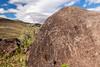 Boulder Sheep (W9JIM) Tags: california unitedstates us w9jim rockart petroglyph ridgecrest 7d2 1635l ef1635mmf4lisusm canoneos7dmarkii 16mm