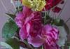 Primaveral (pedroramfra91) Tags: primavera spring naturaleza nature flores flowers colores colors
