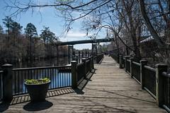DSC_5199 (Copy) (pandjt) Tags: roadtrip unitedstates usa southcarolina conway conwaysc riverwalkpark riverwalk park boardwalk