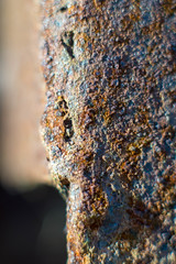 Rusty rust. (Yashinon Yashica ds-m 50mm f1.7) (M42) (craigc1081) Tags: rust corrosion metal old aged decay texture rusty weathered rot yashinon yashica vintagelens m42 vintageglass manuallens sony sonyalpha a58