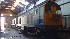 Balfour Beatty's pair of Class 20s 20142 & 20189 under cover at Swanwick. Midland Railway Centre. 28 12 2014 (pnb511) Tags: diesel engine loco locos locomotives train rail shed midlandrailwaycentre derbyshire trains railway class20 balfourbeatty