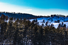 Custer Park 20180223-0058 (Photos By Bob Van) Tags: blackhills csp custerstatepark landscape snow southdakota winter custer unitedstates us