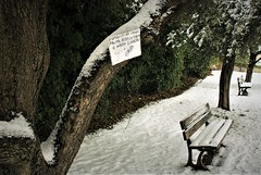 IMG_8984 (olivieri_paolo) Tags: supershots snow bench abstract