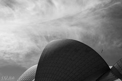 Sydney Opera House (D. R. Hill Photography) Tags: sydney australia travel sydneyoperahouse architecture blackandwhite monochrome newsouthwales sky clouds bird nikon nikond750 d750 nikon50mmf14g 50mm primelens fixedfocallength