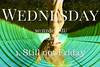 Wednesday (Atshirtaweek) Tags: wednesdaywisdom humpdayhumor upsidedownworld hairflip moodyports quotes