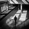 North (tim.perdue) Tags: greater columbus convention center gccc ohio downtown urban city architecture lines pattern repetition black white bw monochrome olympus omd em10mkii panasonic 1232mm mirrorless micro four thirds mft m43 light shadow sunlight man person figure street candid walking north door window floor reflection angle above atrium
