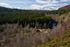 Glen Glass (Donald Beaton) Tags: uk scotland highlands evanton glen glass ben wyvis norway spruce birch river landscape view scene snow trees forest sony a7