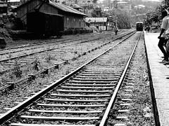 Gare de Haputale (Laura H8) Tags: blackandwhite noiretblanc ceylan voyageurs srilanka haputale gare train