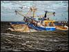 Rudy Nieuwpoort (glessew) Tags: rudy nieuwpoort belgië belgique vlaanderen westvlaanderen fishing vissen