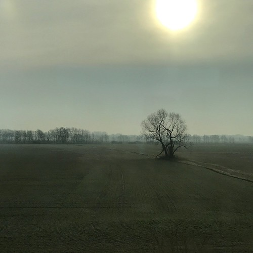 Landscape somewhere between Luckenwalde and Jüterbog (as seen from train)