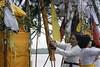 Malesti ceremony 2018 (Iwan Madari) Tags: madariphoto semarang2018 madariphoto2018 bali balinese semarangindonesia marinabeach malesti hindubali hinduism galungan nyepi canoneos1000d religion spiritual culture baliculture