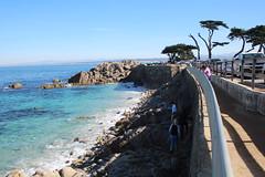 IMG_7652 (mudsharkalex) Tags: california pacificgrove pacificgroveca
