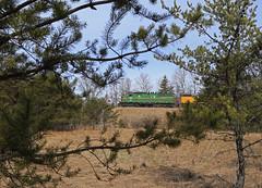 Baldwin Pines (GLC 392) Tags: pine tree 2040 gp382 imrr im cim chicago illinois midland railroad railway train mi michigan 81 emd sd20 mqt marquette rail baldwin eagle job bald