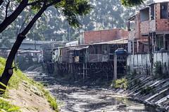 _SSB4620 (Edson Grandisoli. Natureza e mais...) Tags: regiãosudeste palafita córrego urbano favela carente rio água lixo poluição esgoto casa moradia
