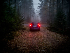 VolvoFall2017 (__A85__) Tags: volvo fall forest mist
