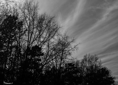 Apathy For All (that_damn_duck) Tags: blackwhite monochrome clouds cloud nature bw blackandwhite