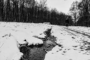 Snowing - again :-)