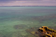 Cádiz, bahía (J.vier) Tags: agua water océano ocean sea mar bahía cielo ruinas ruins gaviota seagull mirrorless apsc sony nex blue green azul verde