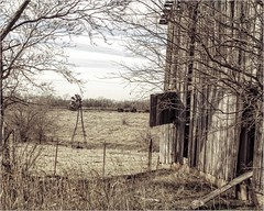 Windmill in the Meadow (A Anderson Photography, over 2.2 million views) Tags: windmill canon barn