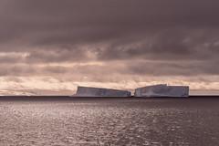 (thomas.reissnecker) Tags: ice iceberg landscape antarctica