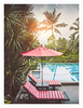 Just relax (Alex E. Milkis) Tags: suratthani poolside view kohsamui thailand garden jungle sunset evening rays fade wide beautiful colors vacation explore wild national d810 2470 postprocess imagine travel best forest water sky tree