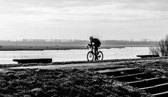 _DSC3110-3 (durr-architect) Tags: dike road almere lelystad oostvaardersplassen ijsselmeer lake markermeer ice water sea