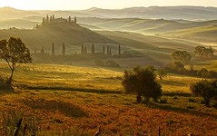 Countryside, San Quirico d`Orcia , Tuscany, Italy (phuong_ttp) Tags: hill dreamland fog italian meadow foggy agriculture green spring italy amazing sunrise field scenery cypress farm morning sun homestead countryside garden gold mood rural scenic country residence nature peaceful idyllic tuscany landscape farmhouse
