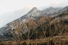 IMG_1100 In mountains near Facheca (jaro-es) Tags: nature natura natur naturewatcher naturemaster naturesfinest montañas mountains bergen trees arboles canon españa eos70d spanien spain spanelsko