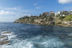 _RJS6539 (rjsnyc2) Tags: 2018 australia beach bondibeach d810 day nikon nikond850 ocean richardsilver richardsilverphoto richardsilverphotography sydney travel travelphotographer travelphotography travelphotographywinter city