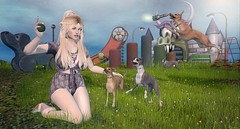 Catch and Release (Duchess Flux) Tags: collabor88 fameshed palegirlproductions blush skinfair weloveroleplay thearcade cynful wasabi empyreanforge skinnery catwa lbeyes arte purepoison jian madpea psinanna secondlife sl playground dogs greyhound