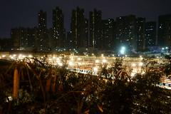 The MTR dock of Shenzhen city