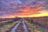 The lost road (Kansas Poetry (Patrick)) Tags: bakerwetlands wetlands sunset road color colour red rouge wild