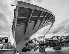 Bridges, Gateshead, Newcastle upon Tyne, North East England, UK. (CWhatPhotos) Tags: cwhatphotos gateshead olympus em5 mk ii micro four thirds camera bodycap body cap fisheye fish eye lens 9mm photographs photograph pics pictures pic picture image images foto fotos photography artistic that have which contain newcastle upon tyne river bythe north east england uk bridge span crossing millennium blue water host city day skies thebaltic baltic buildings clouds wide angle tilt tilting