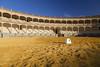 Plaza de Toros de Ronda, Spain (Tim van Woensel) Tags: ronda bullring bullfight arena plaza de toros pillars stadium andalucia andalusia spain travel europe sand martín aldehuela
