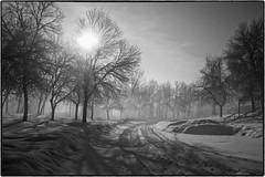 "foggy morning light <a style=""margin-left:10px; font-size:0.8em;"" href=""http://www.flickr.com/photos/76366683@N00/40858560702/"" target=""_blank"">@flickr</a>"