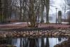 In the park (Maria Eklind) Tags: kungsparken spegling sweden outdoor weather malmö reflection winter skånelän sverige se