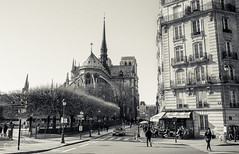 NOTRE DAME (P. Smt) Tags: paris notre dame rue steet ville eglise cathedrale noiretblanc bw nb histoire