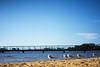 Gulls (Stueyman) Tags: sony alpha ilce a7 a7ii za zeiss wa westernaustralia australia au sky blue river jetty gulls beach sand canningriver