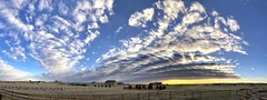Back Home (northern_nights) Tags: pano panorama cloudscape altocumulus sky cheyenne wyoming cell