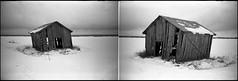 Standing strong (Foide) Tags: lomolca barn söderfjärden winter snow plain sky