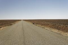 The Outback Trip-2018-7541_DxO (darrylkirby) Tags: abandoned australia australian kangaroo outbacknewsouthwales