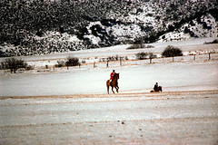 1a-279 (ndpa / s. lundeen, archivist) Tags: nick dewolf nickdewolf photographbynickdewolf 1977 1970s color 35mm film 1a reel1a aspen colorado fall autumn snow november rockymountains foxhunt hunt woodycreek woodycreekhounds roaringforkvalley equestrian equestrians horse horses horseback rider riders redjacket redcoat hat hats jodhpurs boots roaringforkhunt roaringforkhounds