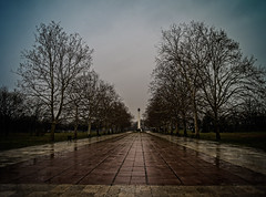 _PS19547 (pouyan_safavi) Tags: citys zemun serbia danube bel belgrade