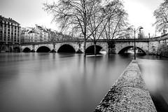 Crue de la Seine (l.pigault) Tags: seine crue matin eau 5m71 fleuve d800 paris pauselongue nikon 1835f3545 paysage