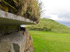 Megalithgrab / Megalithtomb # 1 (schreibtnix on 'n off) Tags: reisen travelling irland ireland knowth brúnabóinne geschichte history megalithgrab megalithtomb olympuse5 schreibtnix