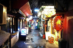 Tokyo Streets 東京 (runslikethewind83) Tags: street tokyo japan lantern urban asia bars narrow night lights 街 東京