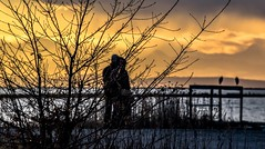 Double date (Christie : Colour & Light Collection) Tags: sunset garrypointpark steveston bc canada silhouette birds people fraserriver river clouds sky